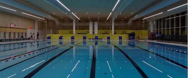 Na de eerste wedstrijd om het Regio kampioenschap is nu ook een begin gemaakt met de Nationale Zwem Competitie. Dit seizoen zwemmen we de wedstrijden in deze competitie in Alblasserdam...