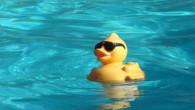 Vrijdag 8 juni was het weer zover, de clubkampioenschappen om het seizoen min of meer af te sluiten en voor de recreant zwemmer te kijken of er ten opzichten van […]